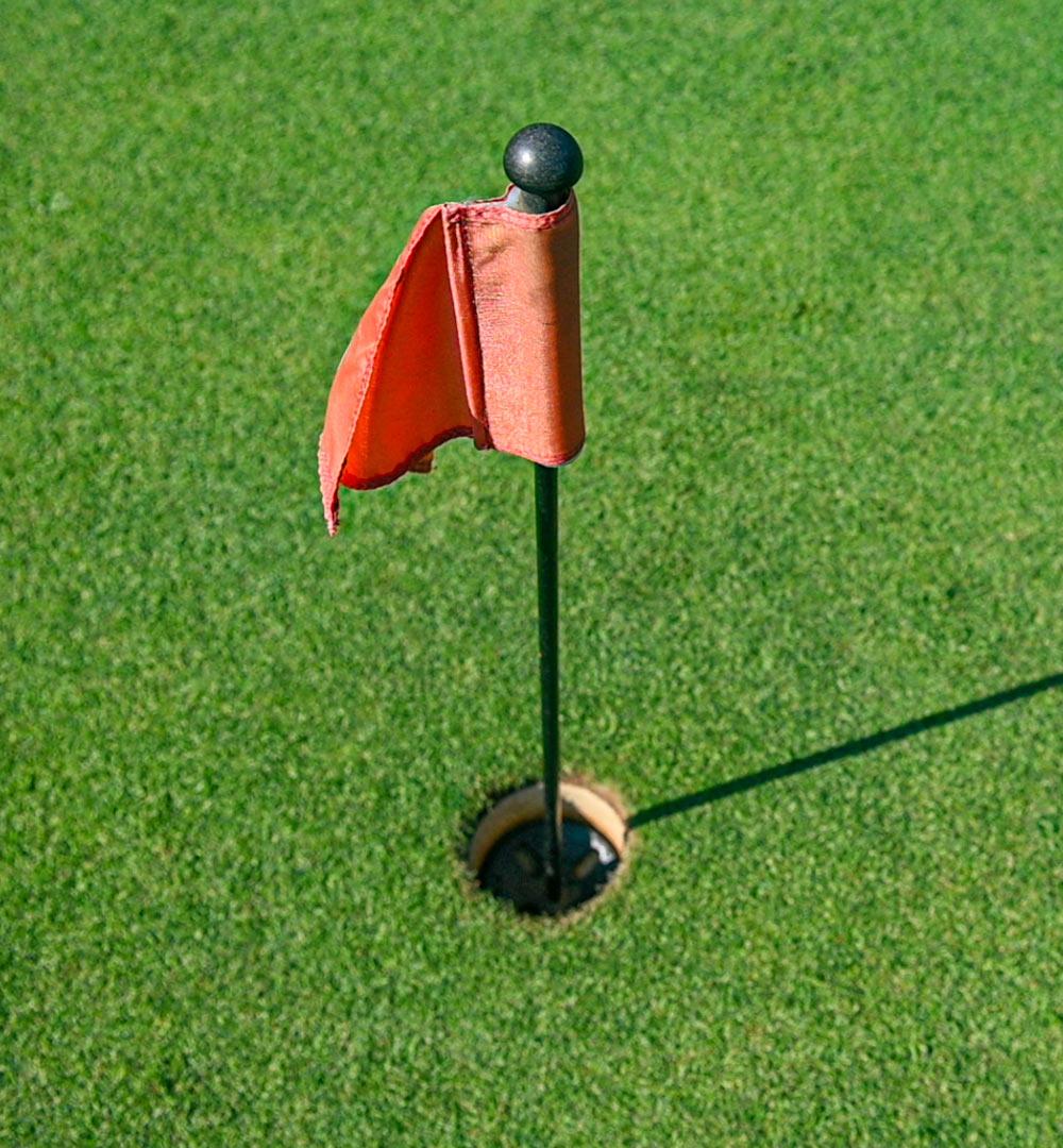 Golf course fees Golf Club le Fronde Avigliana